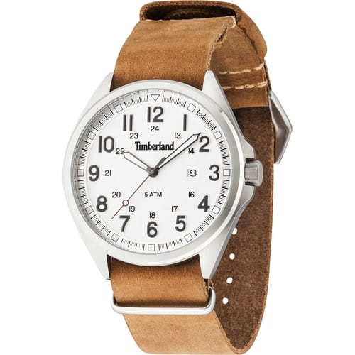 TIMBERLAND watch RAYNHAM - TBL-GS-14829JS-01-