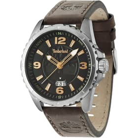 TIMBERLAND watch WALDEN - TBL.14531JS/02