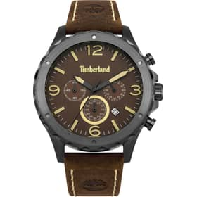 TIMBERLAND watch WARNER - TBL.14810JSU/12