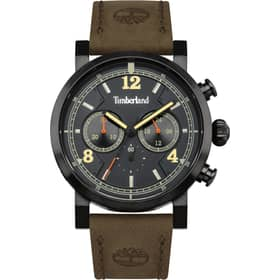 TIMBERLAND watch TEMPLETON - TBL.14811JSB/19