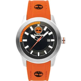 Orologio TIMBERLAND FENWAY - TBL.15355JS/02PA
