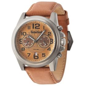 TIMBERLAND watch PICKETT - TBL.14518JS/02