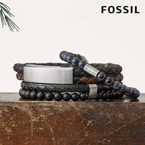 b_grid_fossilJ.jpg