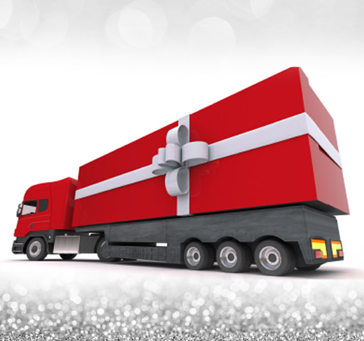 guaranteed delivery by December 24