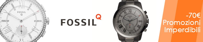 Referenze Fossil -70