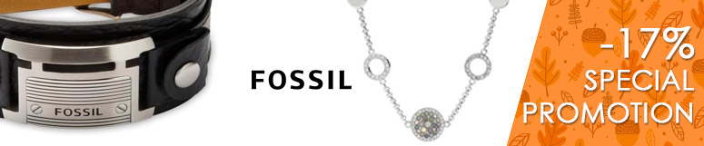 Special promotion Fossil Group - Fossil -17%